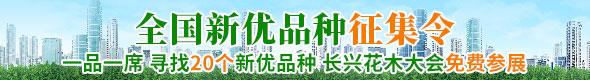 2019中国(长兴)花木大会 新优品种征集令
